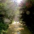 Feng Shui, leven in resonantie met de natuur